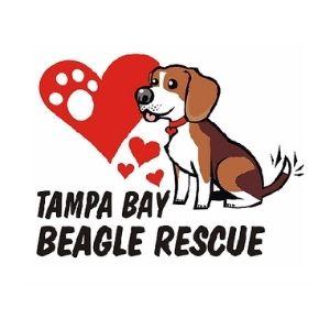 Tampa Bay Beagle Rescue Logo